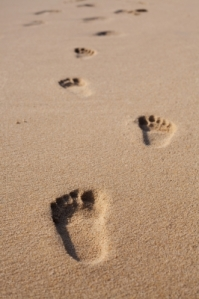 {SCS} Getting started: Leaving a footprint